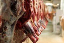 Photo of تولید سالانه ۵۴۳۱ تن گوشت قرمز در ملایر